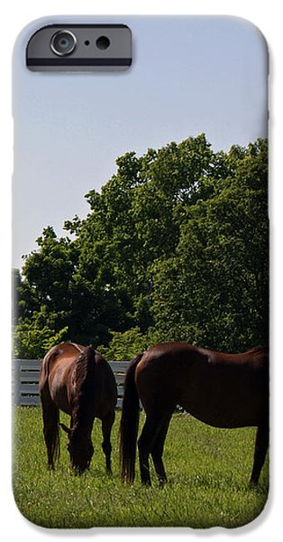 Bluegrass Summer Day iPhone Case by Roger Potts