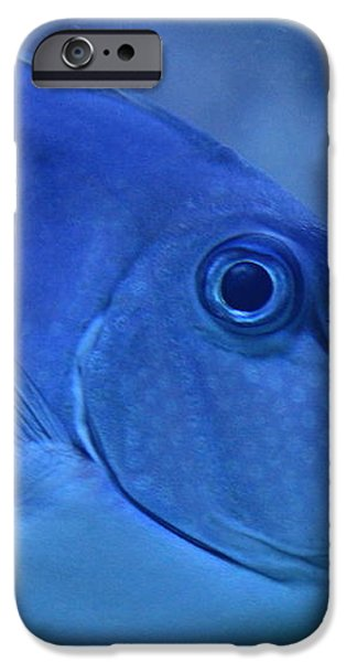 Bluespine Unicorn fish iPhone Case by Karon Melillo DeVega