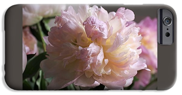 Floral Art iPhone Cases - Blushing Peony iPhone Case by Rona Black