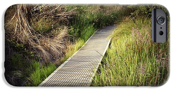 Wetland iPhone Cases - Boardwalk  iPhone Case by Les Cunliffe