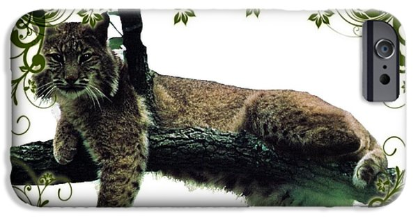 Bobcats Digital iPhone Cases - Bobcat in a tree iPhone Case by Teresa  Peterson