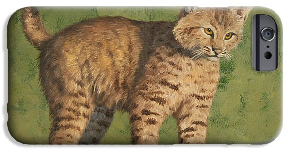 Bobcats iPhone Cases - Bobcat Kitten iPhone Case by Crista Forest