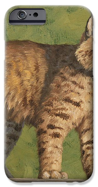 Bobcat Kitten iPhone Case by Crista Forest