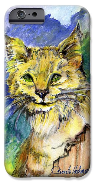Bobcats Paintings iPhone Cases - Bobcat iPhone Case by Pamee Hohner