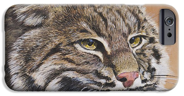 Bobcats Paintings iPhone Cases - Bobcat Portrait iPhone Case by Bill Dunkley