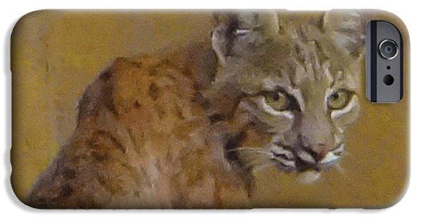 Bobcats Digital iPhone Cases - Bobcat Portrait iPhone Case by Rick Lloyd