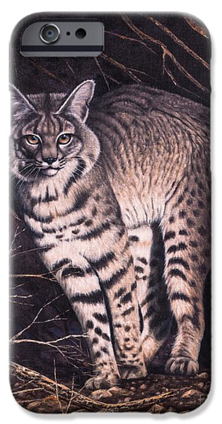 Bobcats Paintings iPhone Cases - Bobcat iPhone Case by Ricardo Chavez-Mendez