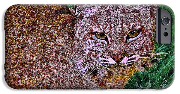 Bobcats Mixed Media iPhone Cases - Bobcat Sedona Wilderness iPhone Case by  Bob and Nadine Johnston