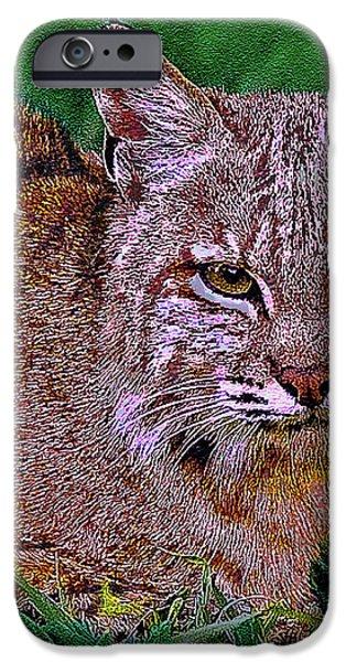 Bobcat Sedona Wilderness iPhone Case by  Bob and Nadine Johnston