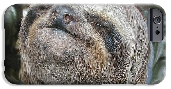 Sloth iPhone Cases - Boca Sloth iPhone Case by Bruce Stanfield
