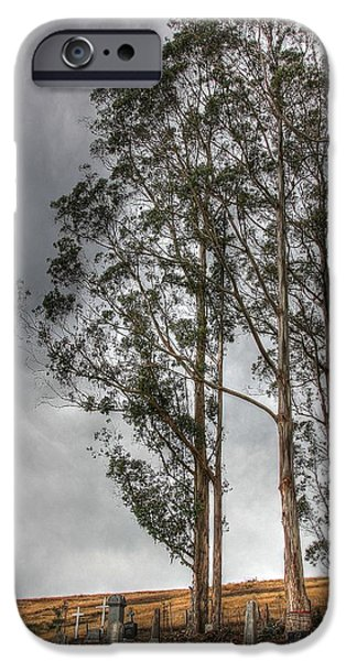 Bodega Bay iPhone Cases - Bodega Calvary Cemetery iPhone Case by Liz Vernand