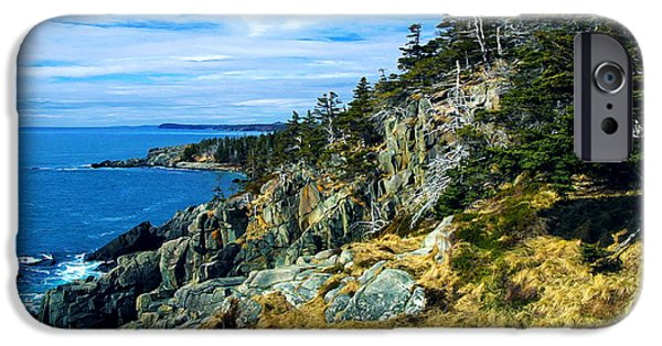 Quoddy iPhone Cases - Bold Coast in Fall iPhone Case by Bill Caldwell -        ABeautifulSky Photography