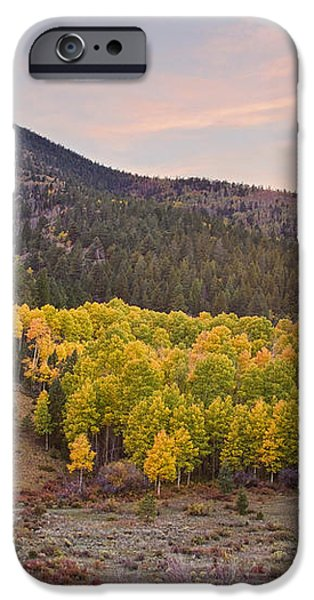 Bonanza Autumn View iPhone Case by James BO  Insogna