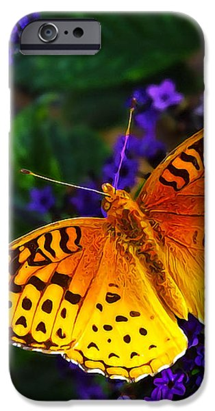 Boothbay Butterfly iPhone Case by Bill Caldwell -        ABeautifulSky Photography