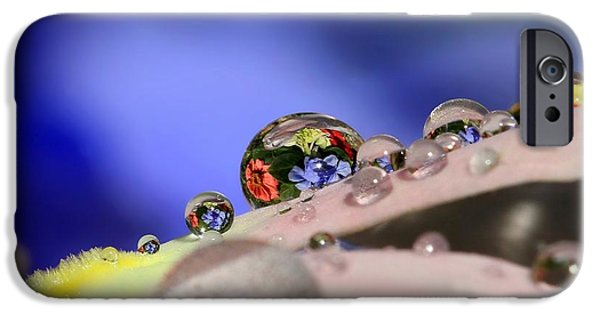Refracted Light iPhone Cases - Bouquet iPhone Case by Gary Yost
