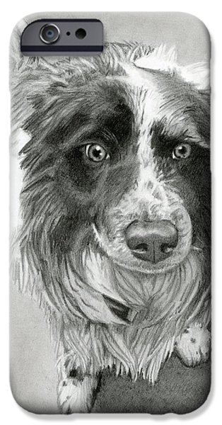 Puppies iPhone Cases - Border Collie iPhone Case by Sarah Batalka
