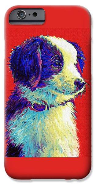 Cute Puppy iPhone Cases - Border Collie Puppy iPhone Case by Jane Schnetlage