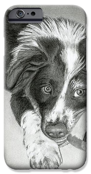 Border Collie Puppy iPhone Case by Sarah Batalka