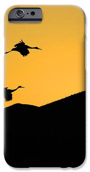 Bosque Del Apache Last Light iPhone Case by Bob Christopher