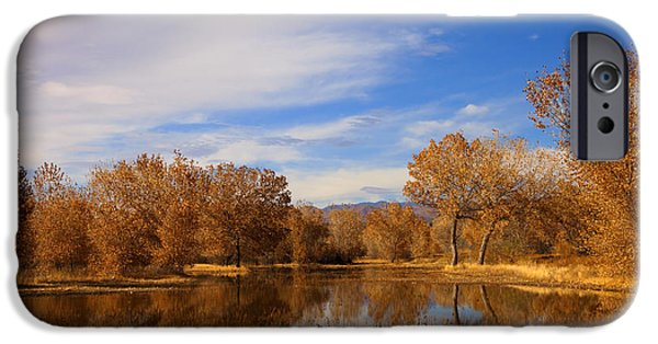 Leave iPhone Cases - Bosque Del Apache Reflections iPhone Case by Mike  Dawson