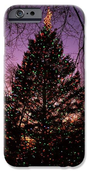 Boston Nightscape iPhone Cases - Boston Common Christmas Tree iPhone Case by Joann Vitali