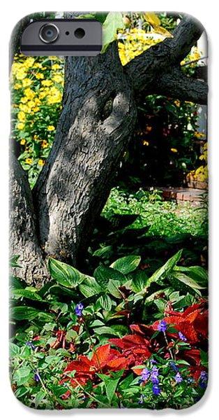 Botanical Landscape 2 iPhone Case by Eunice Miller