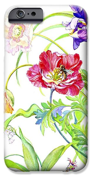Botanical Drawings iPhone Cases - Botanical print iPhone Case by Kimberly McSparran