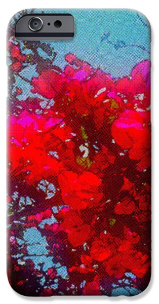 Summer iPhone Cases - Bouganvillia iPhone Case by Anika Kanter