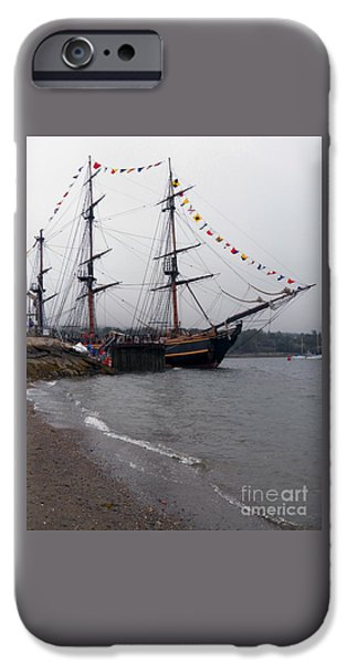 Maine Bounty iPhone Cases - Bounty in Belfast  iPhone Case by L Jaye  Bell