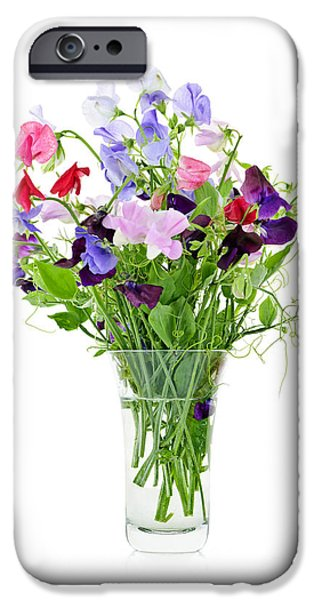 Freshness iPhone Cases - Bouquet of sweet pea flowers iPhone Case by Elena Elisseeva