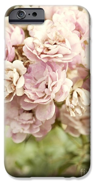 Beautiful iPhone Cases - Bouquet of Vintage Roses iPhone Case by Juli Scalzi