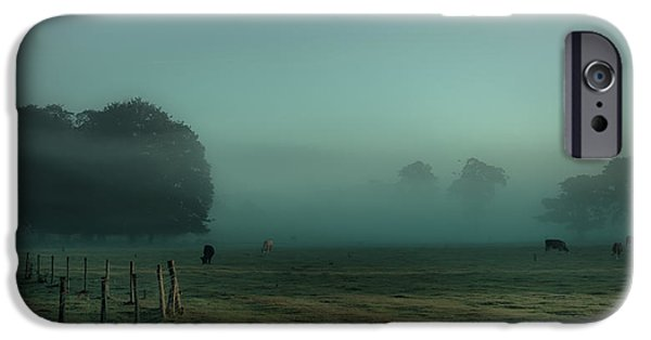 Beef iPhone Cases - Bovines in the mist iPhone Case by Chris Fletcher