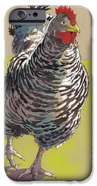 Barnyard iPhone Cases - Bow Chicka WowWow iPhone Case by Tracie Thompson