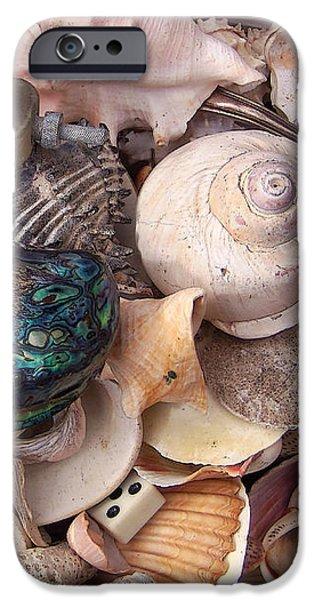Abalones iPhone Cases - Box Full of Treasures iPhone Case by Art Block Collections