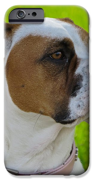 Boxer Digital Art iPhone Cases - Boxer Babe iPhone Case by Ella Kaye Dickey