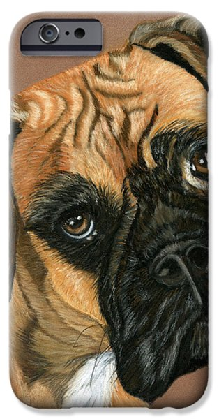 Boxer Dog iPhone Case by Sarah Dowson