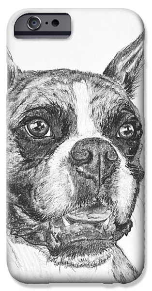 Boxer Dog Sketch iPhone Case by Kate Sumners