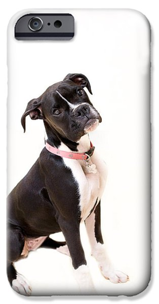 Boxer Photographs iPhone Cases - Boxer Girl 2 iPhone Case by Rebecca Cozart