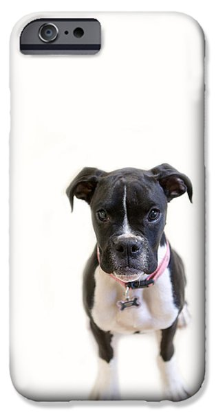 Boxer Photographs iPhone Cases - Boxer Girl 3 iPhone Case by Rebecca Cozart