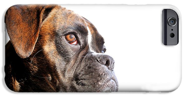 Boxer iPhone Cases - Boxer iPhone Case by Jana Behr