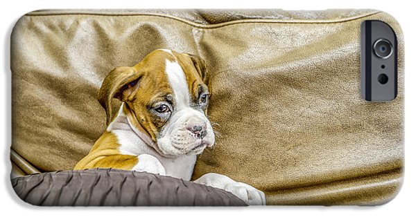Boxer Digital Art iPhone Cases - Boxer puppy on couch iPhone Case by Tony Moran