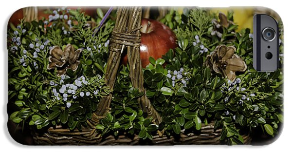 Historic Triangle iPhone Cases - Boxwood Basket iPhone Case by Teresa Mucha