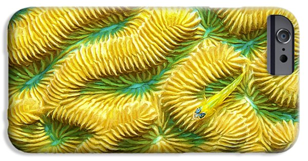 Brain Paintings iPhone Cases - Brain Coral and Goby iPhone Case by David Wagner