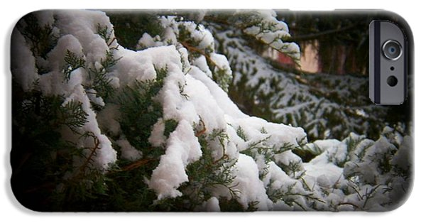 Snow Scene iPhone Cases - Branch in Snow iPhone Case by Joyce Kimble Smith