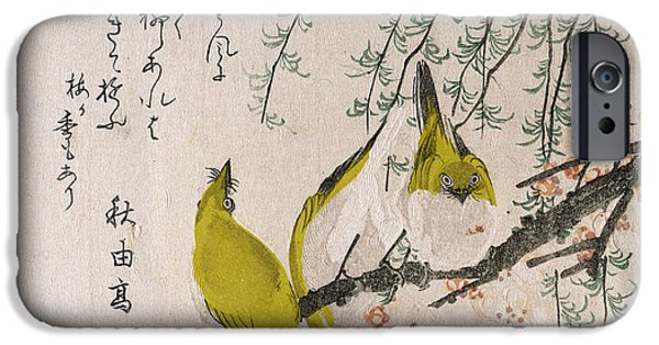 Plum Drawings iPhone Cases - Branches of Plum Tree and Willow with Japanese White-Eyes iPhone Case by Kubo Shunman
