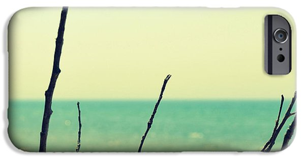 Shoreline iPhone Cases - Branches on the Beach iPhone Case by Michelle Calkins
