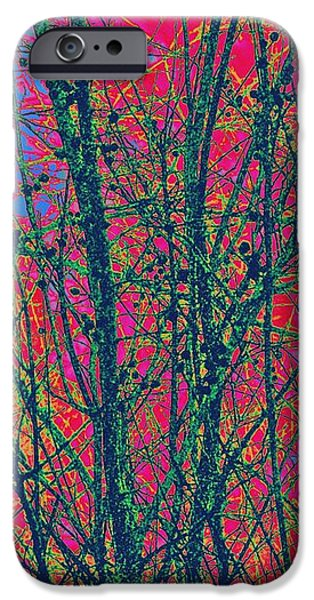 Branches iPhone Case by YoMamaBird Rhonda