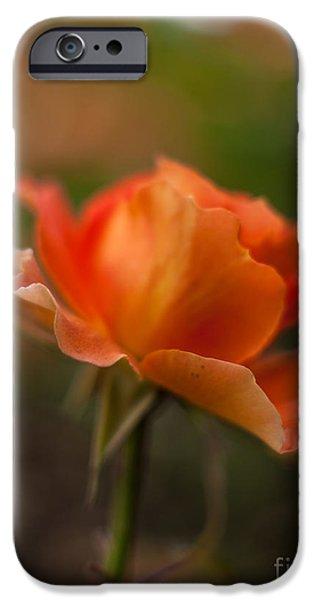 Floribunda iPhone Cases - Brass Band Flourish iPhone Case by Mike Reid