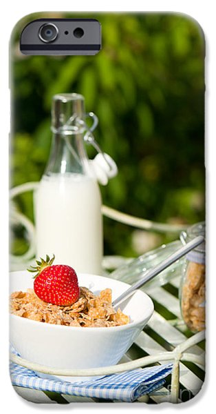 Al Fresco iPhone Cases - Breakfast Dining iPhone Case by Amanda And Christopher Elwell