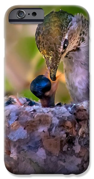 Breakfast iPhone Case by Robert Bales